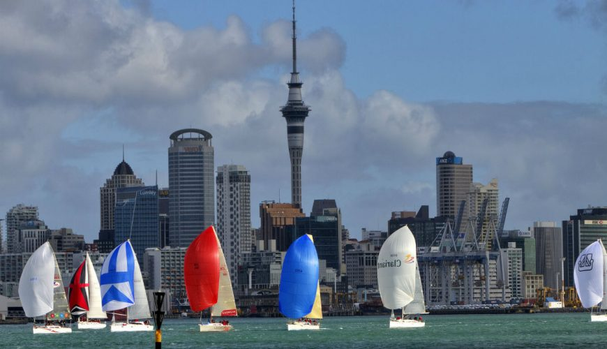 auckland tour packages
